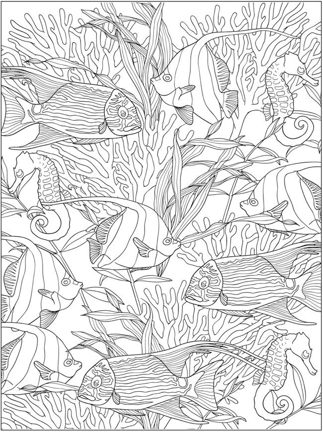 Creative Haven Truly Tropical Coloring Book Dover Publications