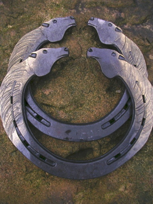 10 Best Images About Horseshoe Projects On Pinterest