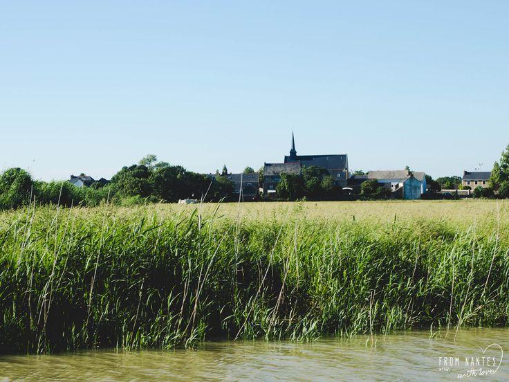 Lavau-sur-Loire Loire Atlantique Croisière inédites sur l'Estuaire de la Loire avec Loirestua