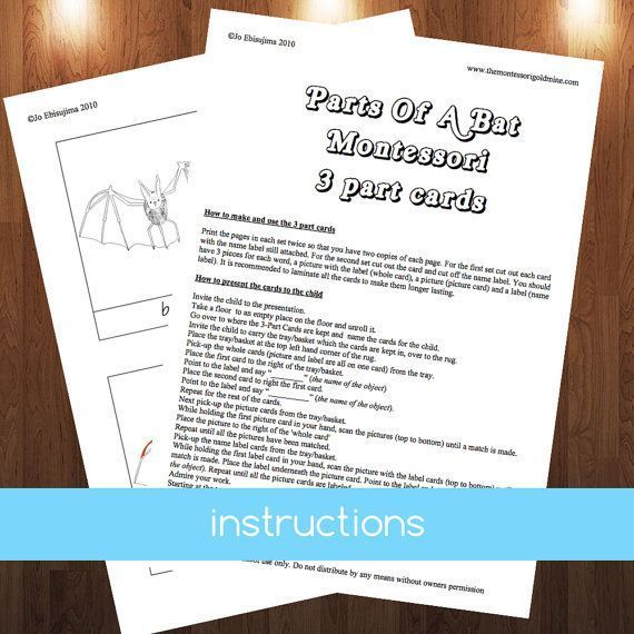 This PDF file contains the following: + Illustrated 3 part cards for parts of a bat  + black and white cards for students to colour  + bat diagram to label  + labelled bat diagram for control of error  + instructions on how to make and present 3 part cards.    Simply print and cut and away you go. You may want to laminate your cards so that they last a bit longer.    You may print out as many copies as you like, handy for home schoolers or teachers in the classroom. You do not have…