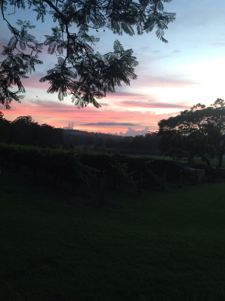 At Bago 6/1/2015 sunrise