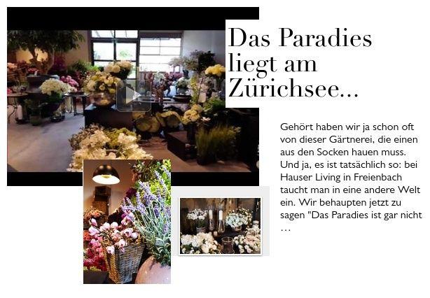 Für dich entdeckt: Hauser Living Gärtnerei, Freienbach