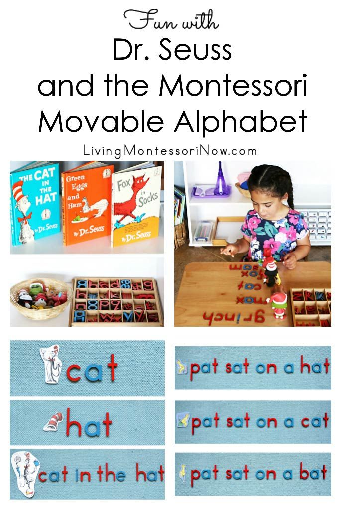 2037 best diy montessori activities images on pinterest fun ideas for using the montessori movable alphabet to spell words phrases and sentences fandeluxe Images