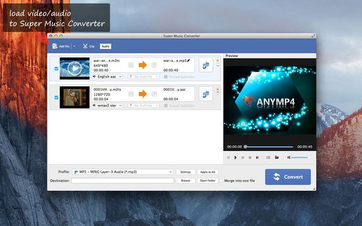 Ms de 25 ideas increbles sobre converter em mp3 en pinterest save 1599 super music converter best mp3 music converter gone free in the apple ccuart Gallery