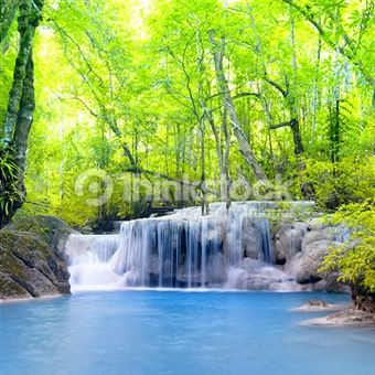 Search for Stock Photos of Images Similar To: 501266163 on Thinkstock
