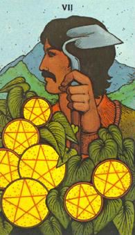 June 20 Tarot Card: Seven of Pentacles (Morgan Greer deck) The more time, work, and energy you invest now, the greater your return will be. No matter how badly you want it to be over with, keep persevering ~ the rewards will come