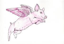 Flying pig tattoo by