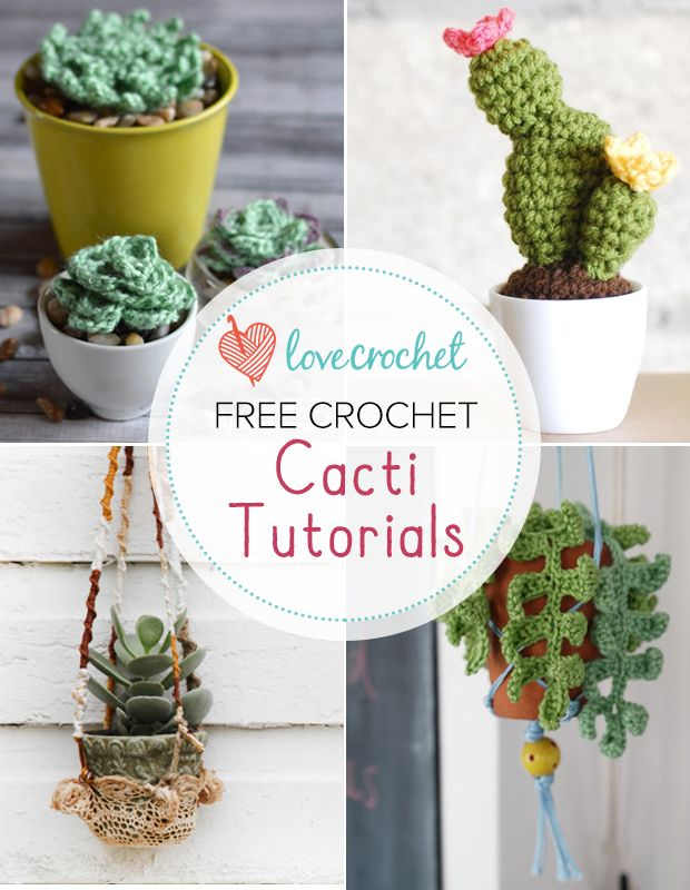 Pinteresting Projects: Cute crochet cacti