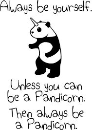 Image result for pandicorn