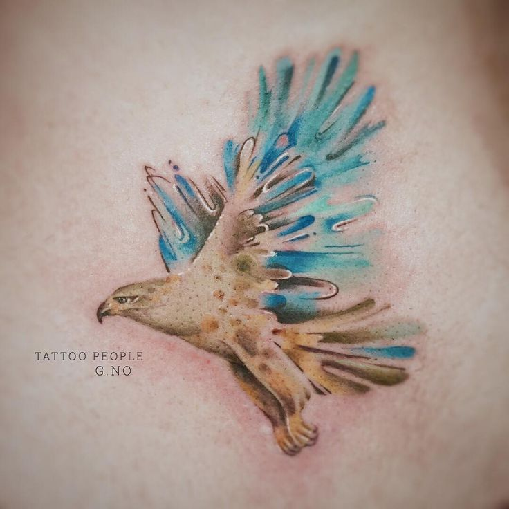 Hawk tattoo by gnotattoo 154 likes body art pinte for Die hard tattoo albany oregon