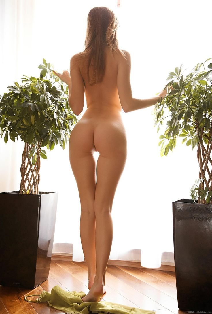 rear view erotic photography