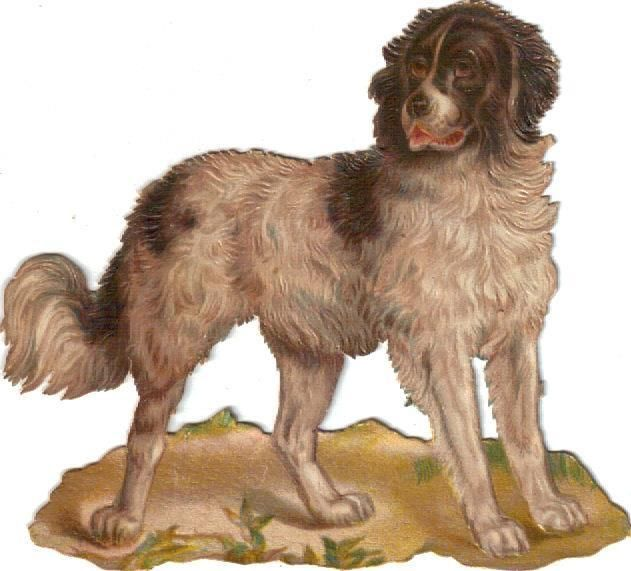 Larger Victorian Die Cut Scrap Spaniel Dog  c1880s