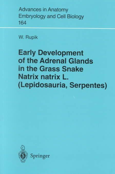 Early Development of the Adrenal Glands in Glass Snake Natrix Natrix L.