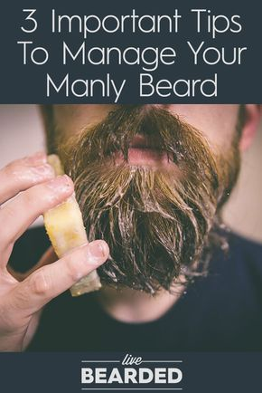 best 25 beard styles ideas on pinterest beards beard. Black Bedroom Furniture Sets. Home Design Ideas