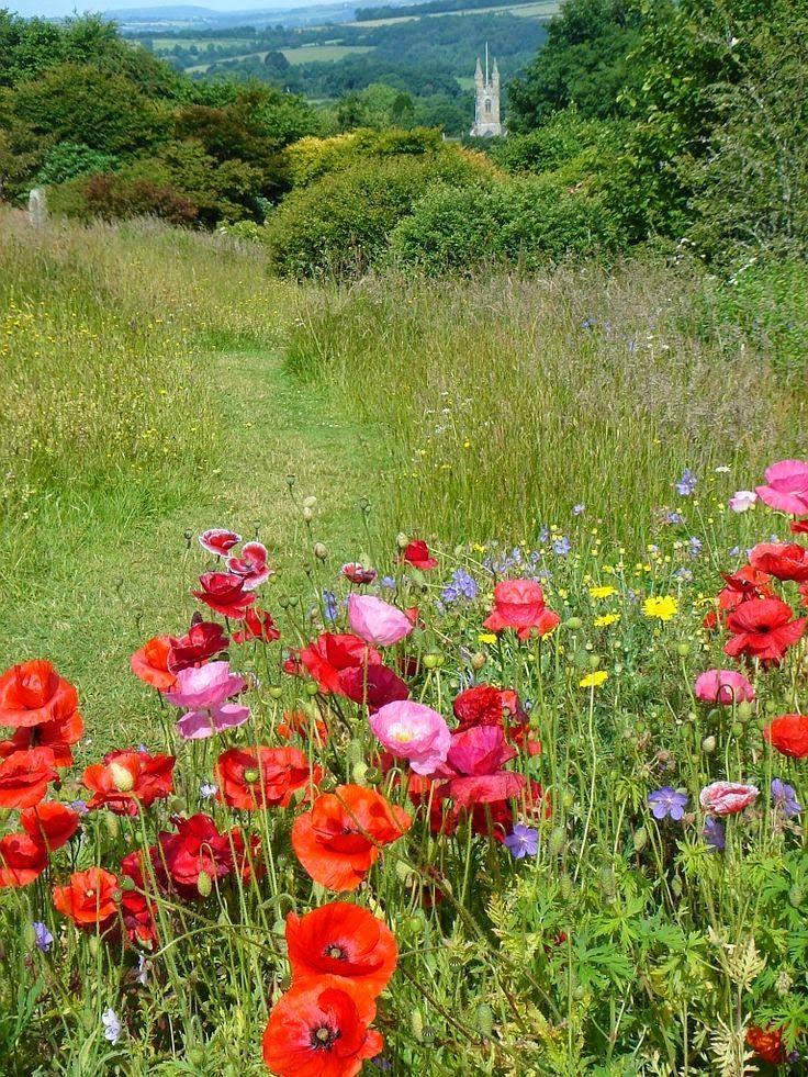 1000 id es sur le th me am nagement paysager country sur for Amenagement jardin anglais