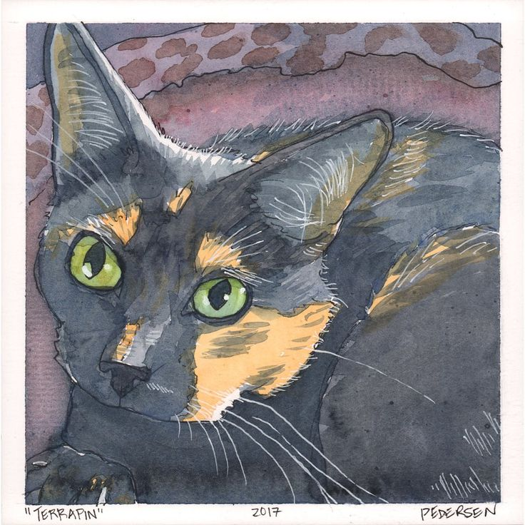 """""""Terrapin"""" - Cat Portrait    This is """"Terrapin, female, and fantabulous! She is my baby, she is extremely talkative and is a tortie!"""" – Nate G.    Watercolor and ink sketch, 6″ x 6″. September 2017."""
