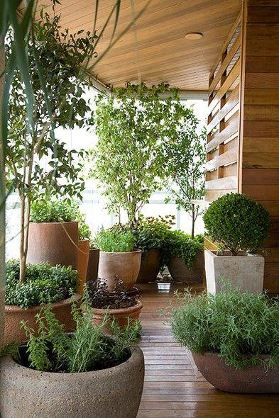 Dá para fazer uma horta incrível na varanda. Os vasos de arenito carregam ervas e temperos de diferentes alturas. São eles: alecrim, manjericão-roxo, manjericão-italiano, salsinha, salsão e cebolinha. Nos vasos de terracota, pitangueira (em primeiro plano), jabuticabeira e romãzeira (ambas ao fundo)