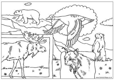 - Canada Day Colouring page  simple as that: Canada Day inspiration: 25 DIY ideas, crafts, printables and recipes for July 1st