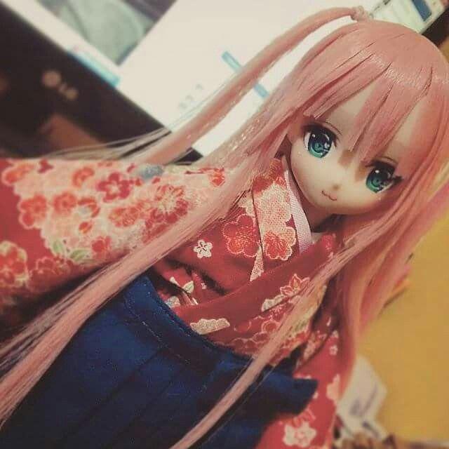 Custom doll obitsu pureneemo azone
