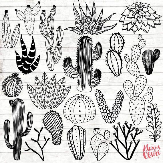 Cactus Clipart – handgezeichnete Cactus Clipart – Vektor-Kaktus-Kunst – Cactus Digital …