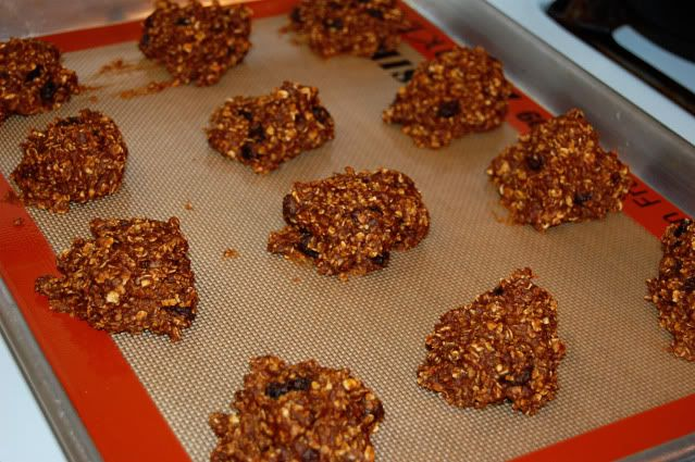 pumpkin protein cookies, advocare, cleanse