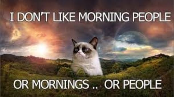 10 Funny Good Morning Quotes To Start Your Day In 2020 Grumpy Cat Humor Grumpy Cat Cats