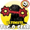 Tuffy dog toys is a must...extreme durability!