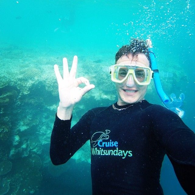 Great Barrier Reef  #greatbarrierreef #whitsundays  #cruisewhitsundays #naturalwonders  #reefworld #reefselfie