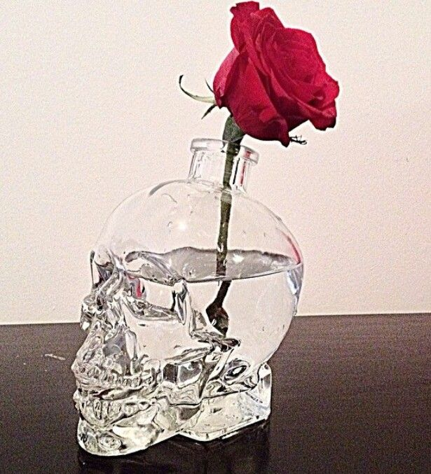Crystal head vodka bottle...never even thought about this. Although I did save the bottle.