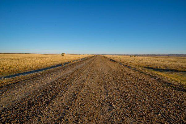 grasslands-dirt-road