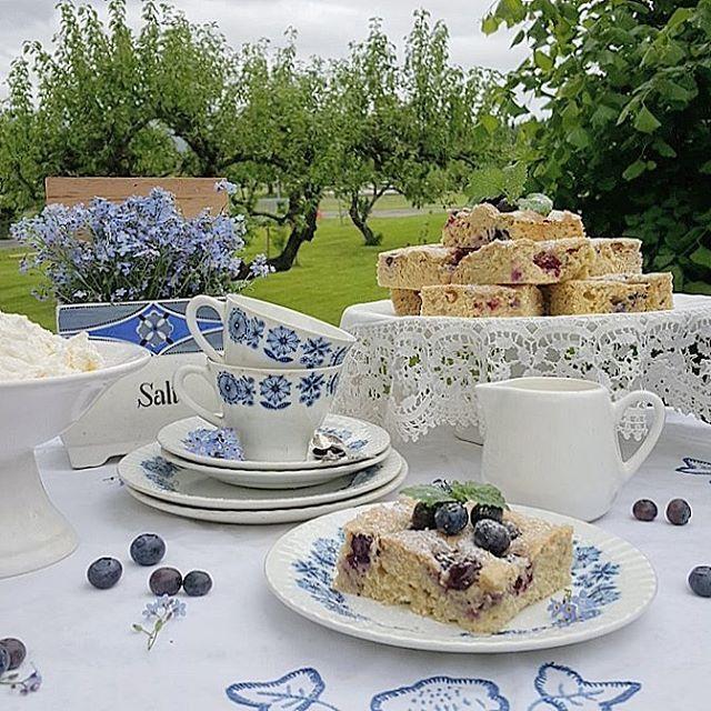 🍃💙 Det ble en saftig og god blåbær rutekake i dag/med iskrem  til 'kaffi'en🍃virkelig å anbefale...oppskrift på bloggen...🍃 🍃💙 It became a juicy and good blueberry cake  With ice cream  for the coffee today🍃💙 ~•~•~•~~•~~~•~~•~••~•~•~•~•~~•~•~~•~~•~• #blåbærkake #blueberrycake  #hjemmebaket#antique_r_us  #tv_stillife #still_life_gallery_ #sh #gardenlife #hageglede #myvintagehome #hjemmelaget #bakerglede #landlighjem ghjem #interiømagasinet #levlandlig#landstil #forglemmeiei…