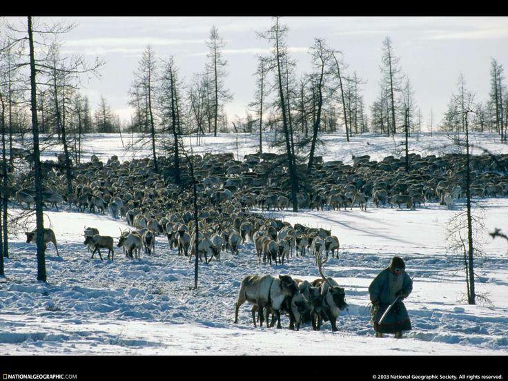 заставки для мобильных телефонов - Вне цивилизации: http://wallpapic.ru/national-geographic-photos/beyond-civilization/wallpaper-38217