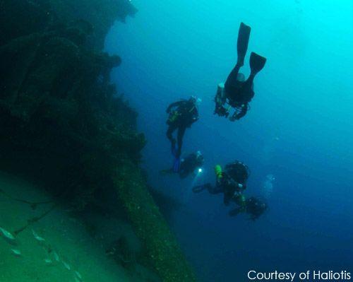 Diving off the Berlenga Islands with the Haliotis Dive School.