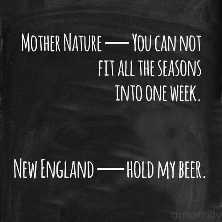 Weather This Week Maine Massachusetts Memes Weather Quotes England Weather