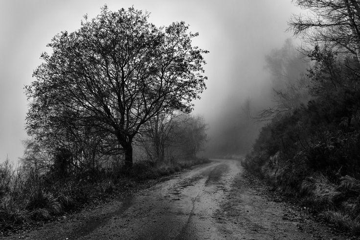 Fog and rain by Claudio L'Estremo Montegriffo on 500px