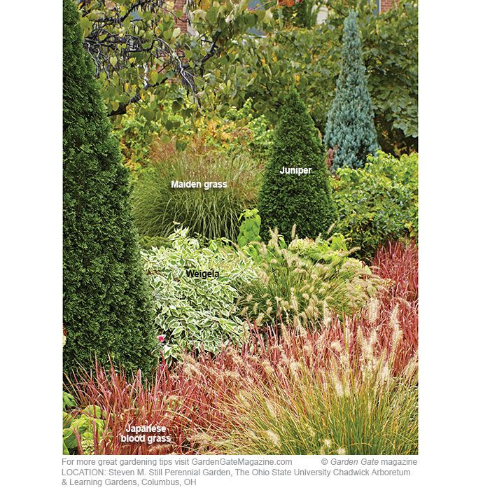 Best Garden Design Ideas Images On Pinterest Garden Gate