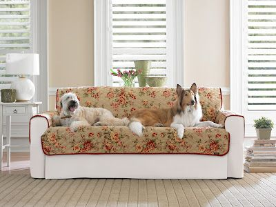 Sleeper Sofas Sure Fit Slipcovers Pet Protection With Style