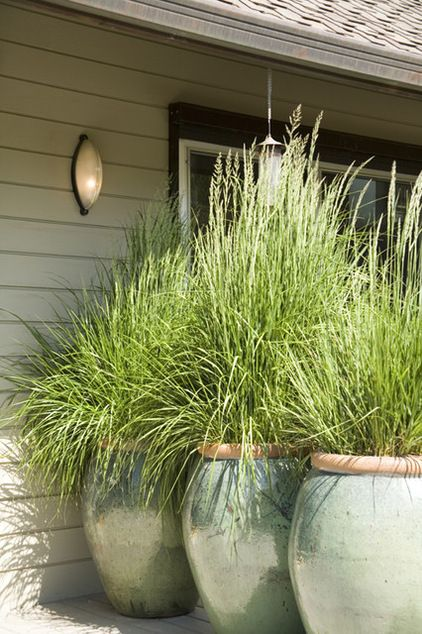by Mark English Architects, AIA »  Who wants a solid fence next to an entry door or a bedroom window? This soft, elegant solution is far preferable. A trio of Ali Baba–scale pots, each planted with a stunning ornamental grass, creates a kinder, gentler barrier with style.