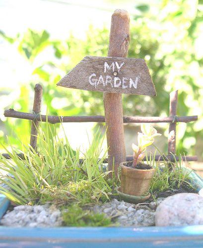 Wee fairy garden. #GardeninginMiniature