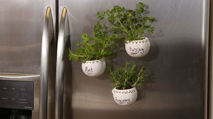 Create a Magnetic Herb Garden in 30 Minutes