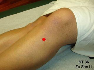 Acupressure Point ST36: Stomach 36 or Zu San Li (avec ...