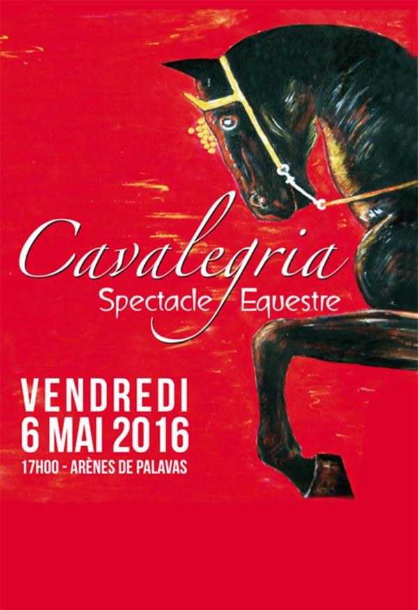 Entrez dans l'univers des écuries les plus prestigieuses, en assistant au spectacle de Cavalegria!! #equitation #spectacle #cheval