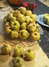 Recept: Kweeappel (peer) taart