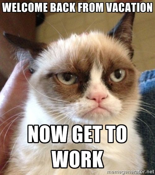 Grumpy Cat 2 - Welcome back ...