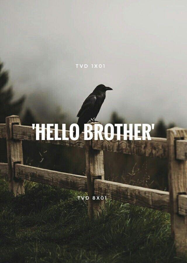 "you had me at ""hello"""