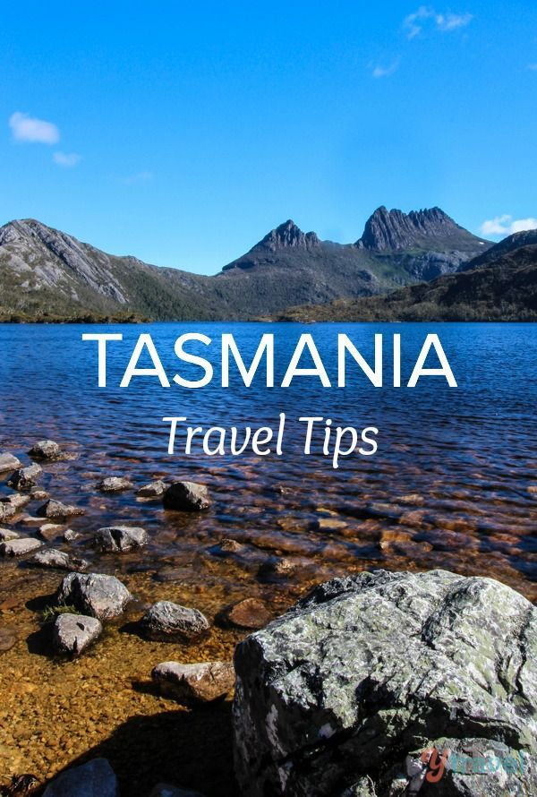 Planning a trip to Tasmania? We've got the best travel tips for Tassie all in one place!