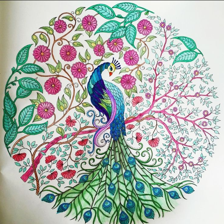 Peacock and flowers - Strut Your Stuff - Color Me Forum