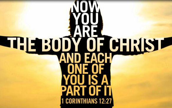Now you are the body of Christ and each one of you is a part of it. ~ 1 Corinthians 12:27