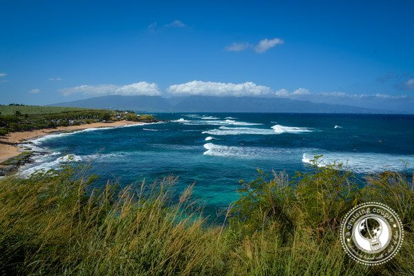 Hookipa Beach Maui, Hawaii-- these jaw-dropping pictures will  have you packing your bags for Maui today!