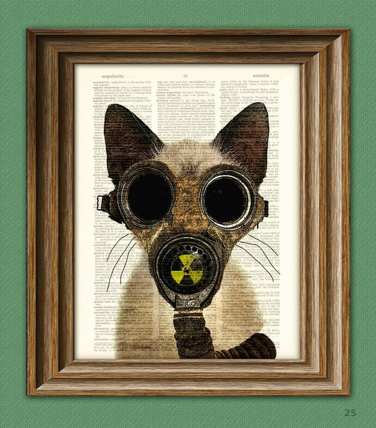Art Steampunk Print Fallout Kitten Post Apocalyptic gas mask cat illustration beautifully upcycled dictionary page book art print. $7.99, via Etsy.
